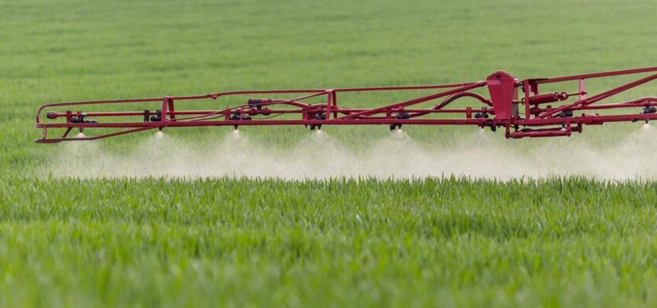 Bei Bauern beliebt, aber gefährlich: Das Pflanzengift Glyphosat