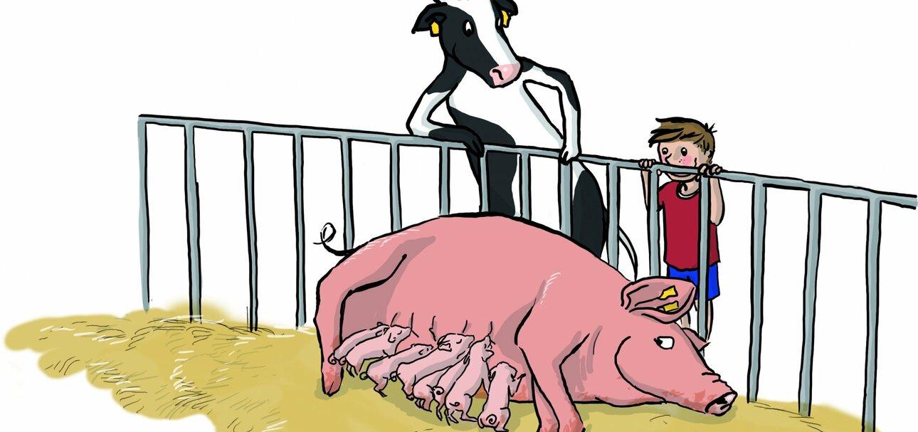 """Unter dem Motto """"Tierwohl – Eine Frage der Haltung!"""" sollen Kinder und Jugendliche herausfinden, wie Nutztiere gehalten werden."""