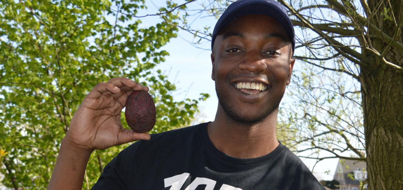 Neville Mchina, Produktmanager für Bio-Avocados bei Eosta, unterstützt die afrikanischen Kleinbauern vor Ort. Foto: Eosta