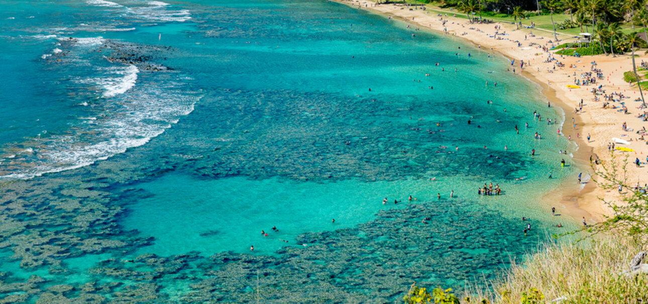 Chemische UV-Filter aus der Sonnencreme sind eine Gefahr für Korallen. Foto/Copyright S.K. Photography - fotolia.de