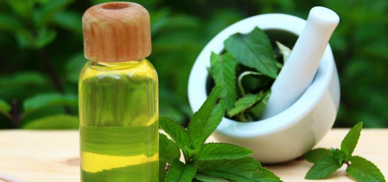 Pfefferminze gilt schon lange als Heilpflanze. Das ätherische Öl kann Spannungskopfschmerz lindern. Foto: www.fotolia.de