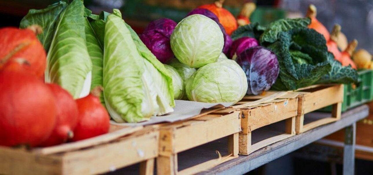 Bio-Lebensmittel werden immer beliebter. Foto: Copyright fotolia.de