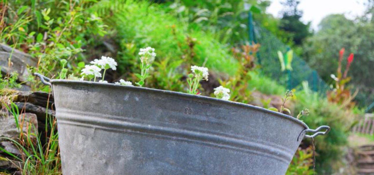 Copyright Wildgarten - www.fotolia.com