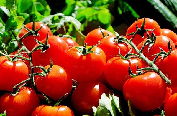Produktbild: Tomaten