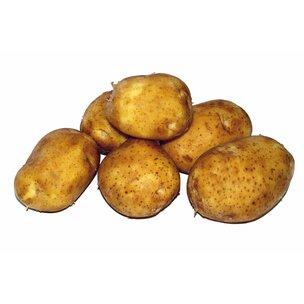 Kartoffeln vfk